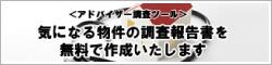 report_banner